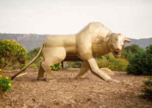 Animal Sculptures at Elings