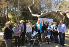 Laura Capps Announces Housing Plan