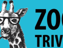 Zoo Trivia Night