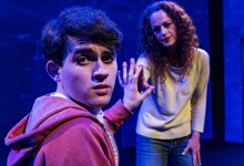 Review   'The Curious Incident of the Dog in the Night-Time'
