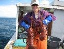 Coronavirus Hurts Santa Barbara Lobster Business