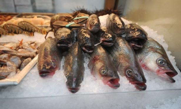 Fishermen Delivering Door-to-Door Seafood