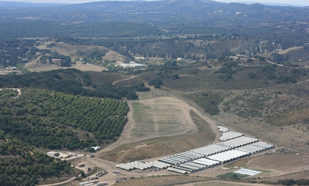 County Permit on Hold for Herbal Angels Cannabis Farm near Lompoc