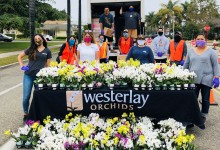 Carp's Westerlay 100,000 Orchids Challenge