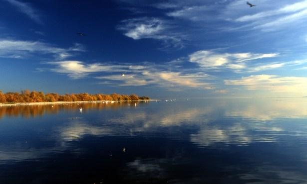 Saving the Salton Sea
