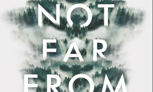 Review   Mindy McGinnis's 'Be Not Far from Me'
