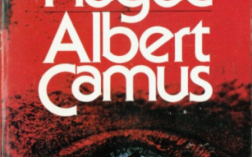 Essay   Albert Camus' 'The Plague vs. COVID-19