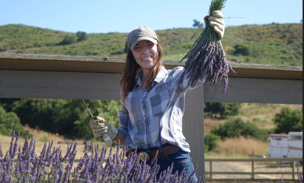 Meet Santa Barbara County's Lavender Lady