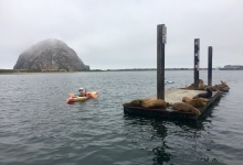 Offshore Wind Farm on the Horizon in Morro Bay?