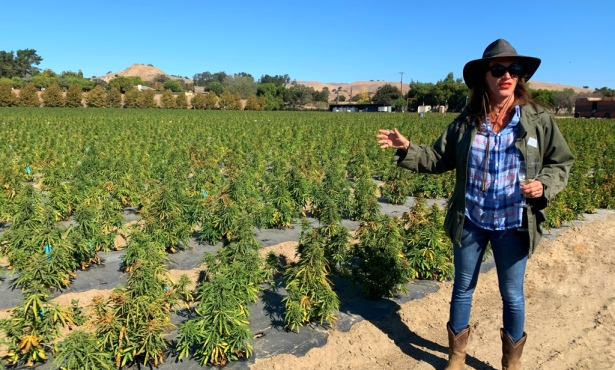 The Agro Women of Santa Barbara County