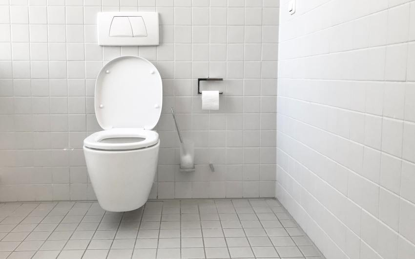 A New Standard in Green Toilets