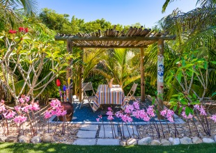 Pool, Palapa, Patio … Paradise