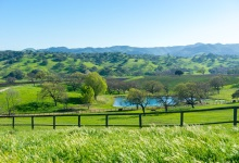 Alisos Canyon Wine Appellation Approved