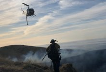 Edison Power Lines Caused Hollister Fire