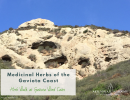 Herb Walk at Gaviota Wind Caves