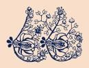 Virtual Workshop: Breast & Lymphatic Health for Whole Health