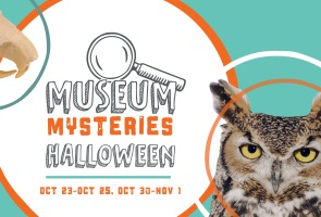 Halloween Museum Mysteries