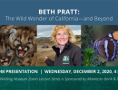 Beth Pratt: The Wild Wonder of California & Beyond