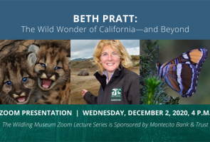 Beth Pratt: The Wild Wonder of California & Beyond