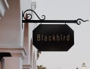 Hotel Californian's Blackbird Is Ready to Fly