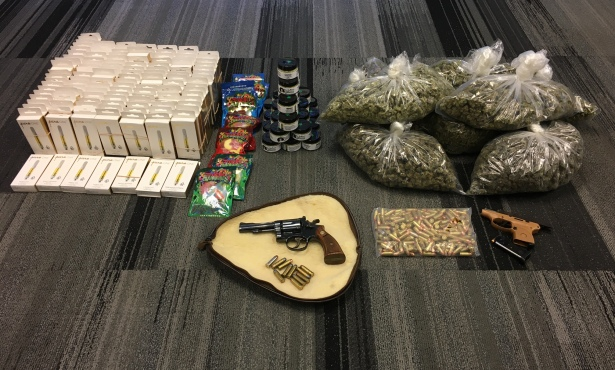 Unlicensed Cannabis Grower Busted in Santa Maria for Guns, Marijuana Possession