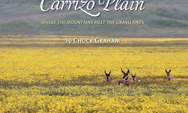 Chuck Graham's 'Carrizo Plain: Where the Mountains Meet the Grasslands'