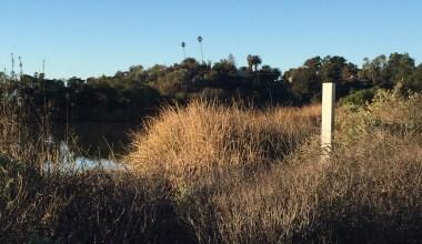 Mini Monolith Spotted in Santa Barbara Bird Sanctuary