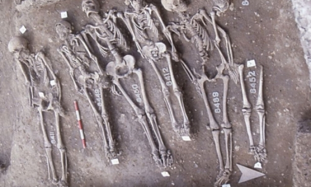 Archaeologists Examine the Enduring Human Costs of Epidemics