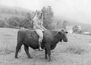One Santa Barbara Woman's Ode to Cows