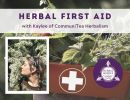 Virtual Event: Herbal First Aid, Build An Herbal First Aid Kit