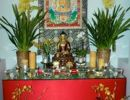 Tuesday Evening Online Meditation 6-7 PM