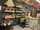 Dirt Botanicals Reveals Retail Studio