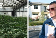 'Los Angeles' Magazine Issues Retraction for Cannabis Corruption Article
