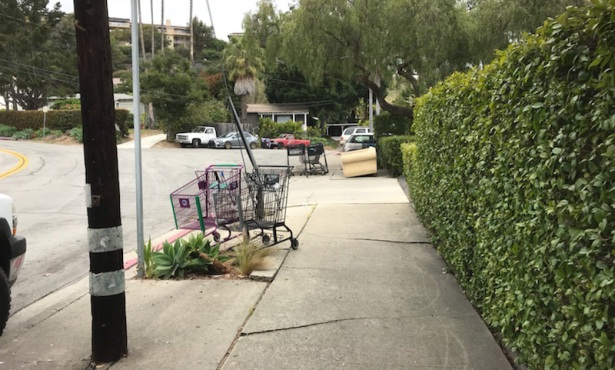 Santa Barbara's New Shopping Cart Ordinance Puts Onus on Business Owners
