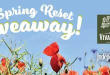 Spring Reset Giveaway: Viva Oliva