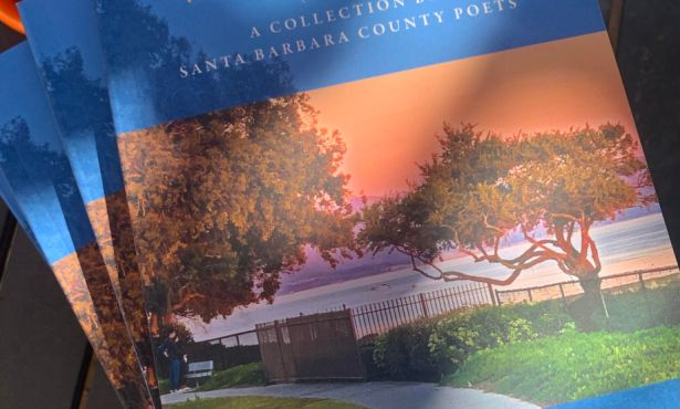 'While You Wait: A Collection by Santa Barbara County Poets'