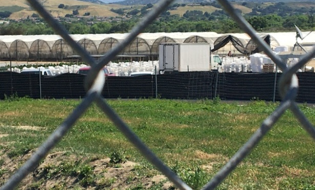 'The Bar Has Been Raised'