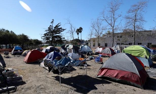 The Poodle Wants a Tent City, Now