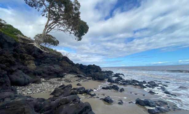 Why I Love Long Walks on the Beach