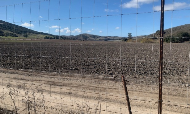 Santa Barbara County Approves 'Gargantuan' Cannabis 'Grow'