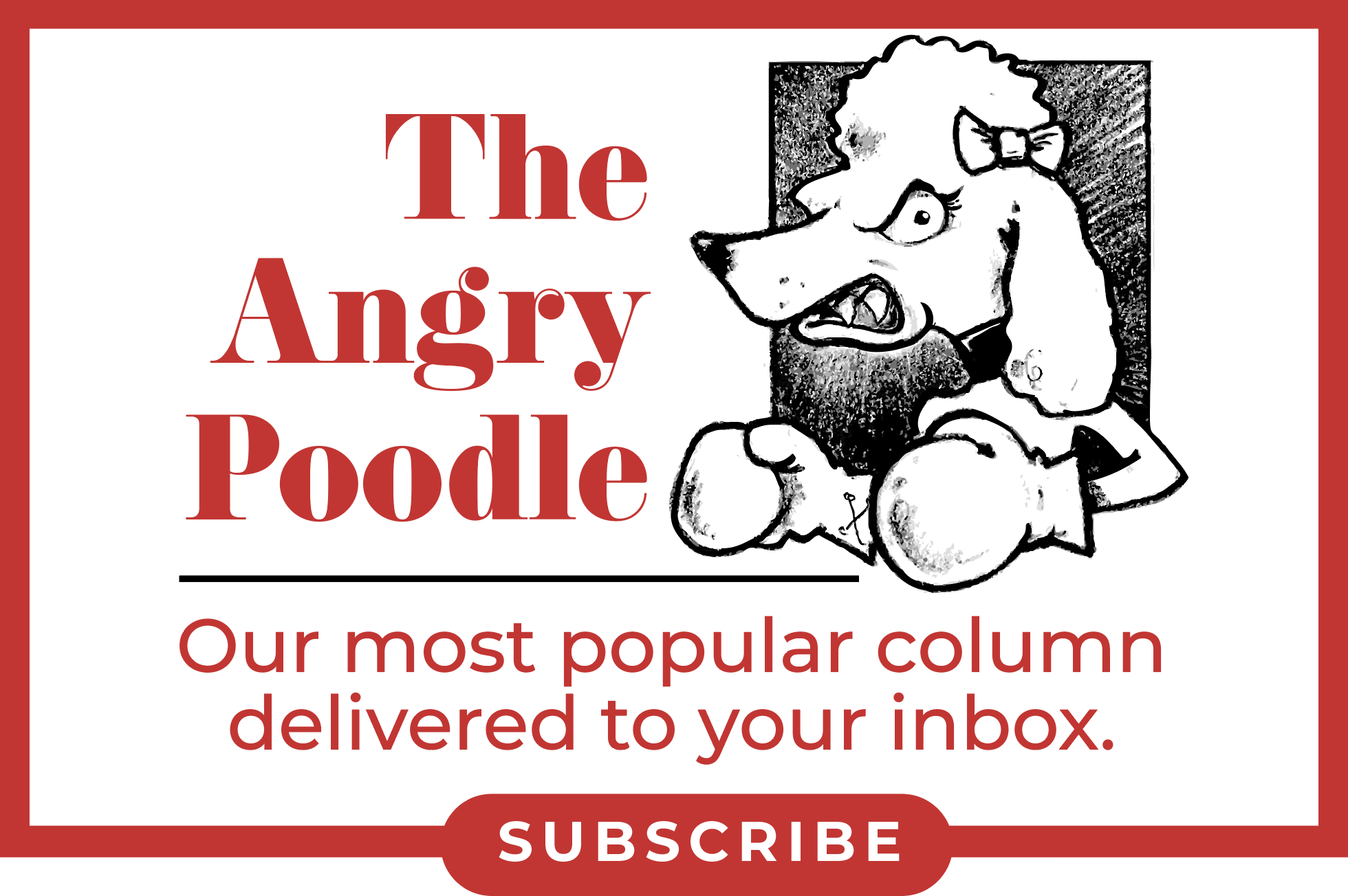 Angry-Poodle