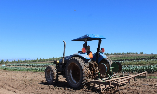Summerland Farmland to 'Remain Green Forever'