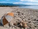 Beach Cleanup with the Sea Center: East Beach