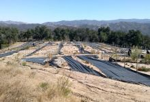 Helios Dayspring's Shoddy North County Operations