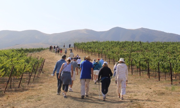 Alma Rosa Winery's Second Annual Peace of Mind Event Raises $177,896