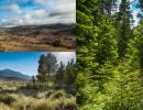 Natural Reserve System Fall 2021 Seminar Series
