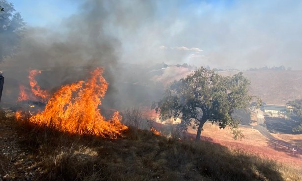 Caballo Fire Caused by Propane-Fueled Torch in Unpermitted Vegetation Burn