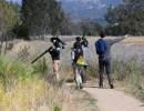 Virtual: SB Audubon Free Programs Start Up