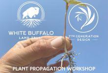 In Person: Plant Propagation Workshop at WBLT