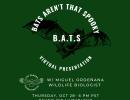 Online: B.A.T.S. – Bats Aren't That Spooky